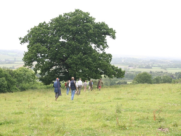 Clay Pigeon Shooting Kelston, Bath, Bath and North East Somer